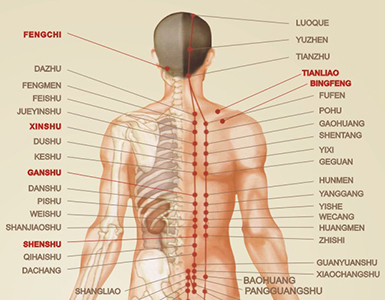 Complex massage for your back